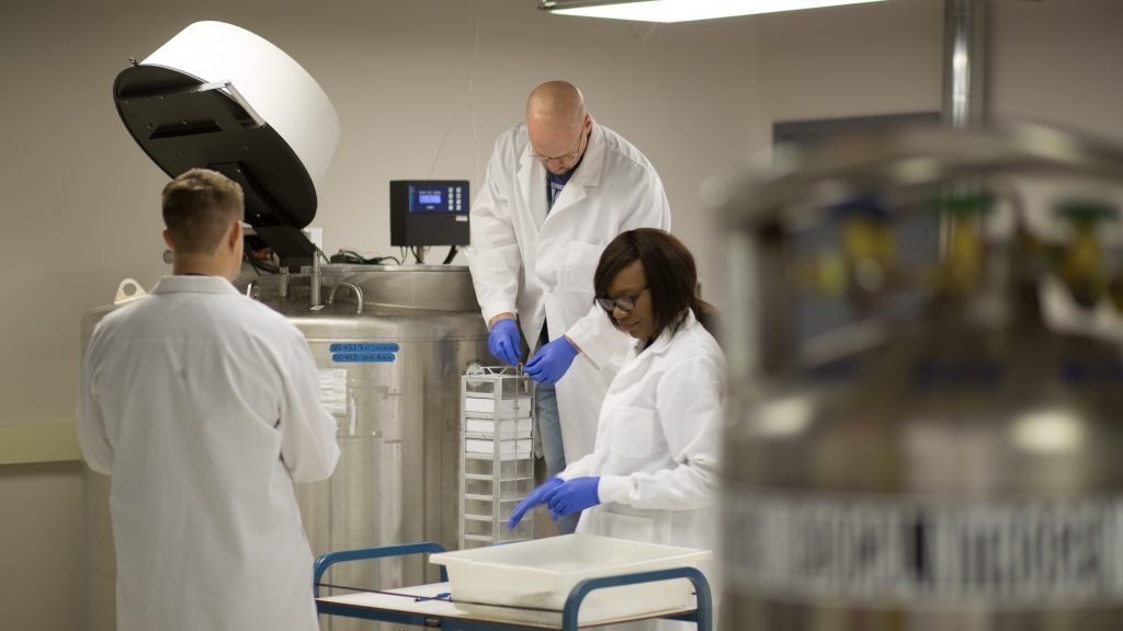 Biorepository personnel organize patient samples for long-term storage